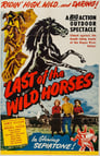 Poster for Last of the Wild Horses