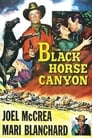 Poster for Black Horse Canyon