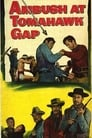 Ambush at Tomahawk Gap (1953) Movie Reviews