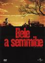 😎 Bele A Semmibe #Teljes Film Magyar - Ingyen 2006