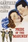 Pride of the Marines (1945) Movie Reviews