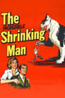 Poster for The Incredible Shrinking Man