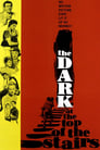The Dark at the Top of the Stairs (1960) Movie Reviews