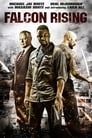Poster for Falcon Rising