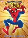 Вражаюча Людина-павук (2008)