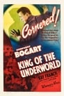 King of the Underworld (1939) Movie Reviews