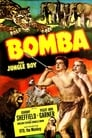Bomba, The Jungle Boy Streaming Complet VF 1949 Voir Gratuit