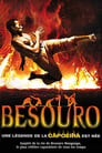 Besouro ☑ Voir Film - Streaming Complet VF 2009