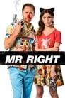 Mr. Right (2013) Movie Reviews