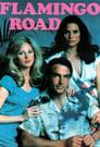 Flamingo Road (1980)